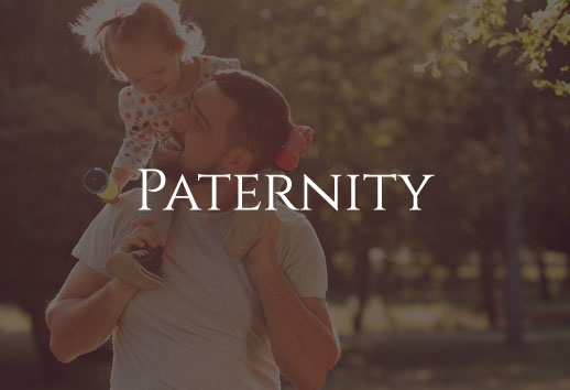 Paternity Lawyer